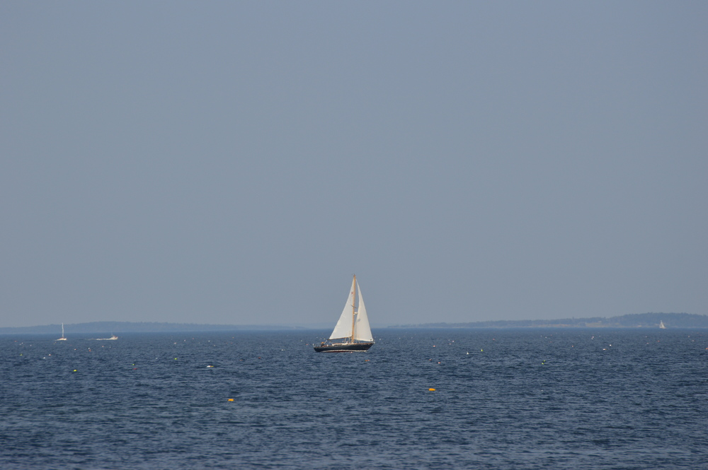 I love sail boats, so much! :D