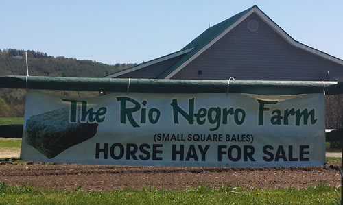 Rio Negro Farm — Scott Reed   Square bale horse & cattle hay   4554 Route 14   Craftsbury VT 05826    Phone: (802) 586-9686