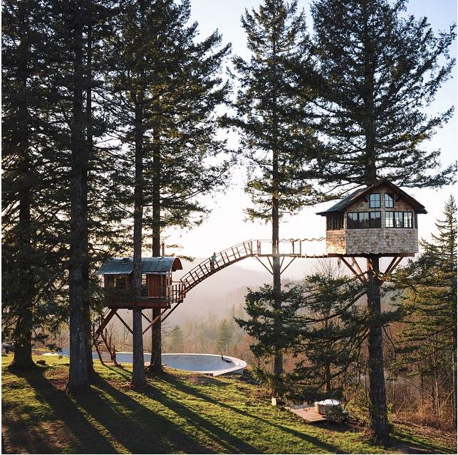 "I'm deathly afraid of heights but I'd climb for this view. The first cabin, his ""studio"" is 20 feet above ground. The second construction called ""The Octagon"" is 35 feet above ground. Photo, lepetitespestes.com"