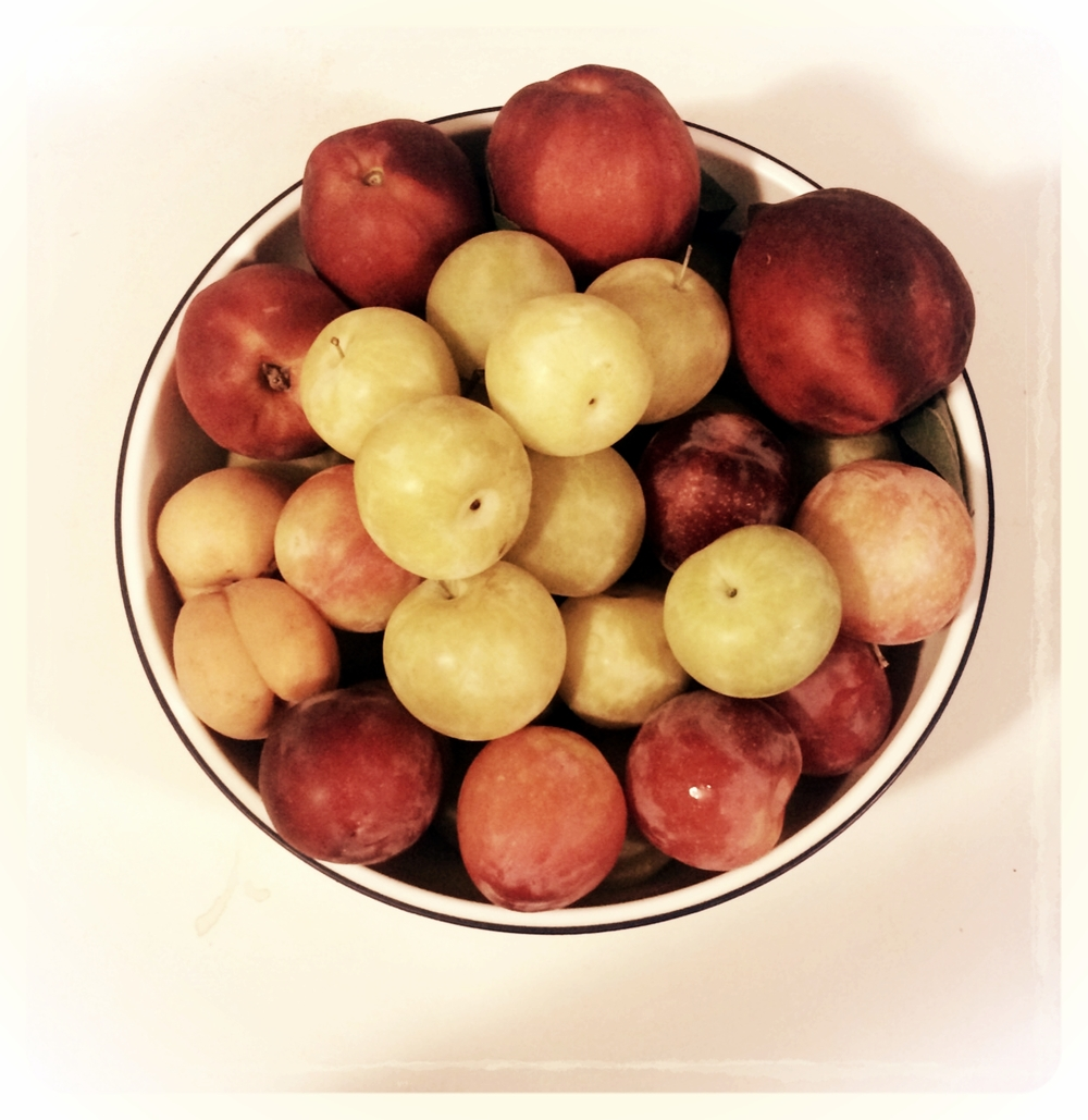 Plums, peaches, nectarines....