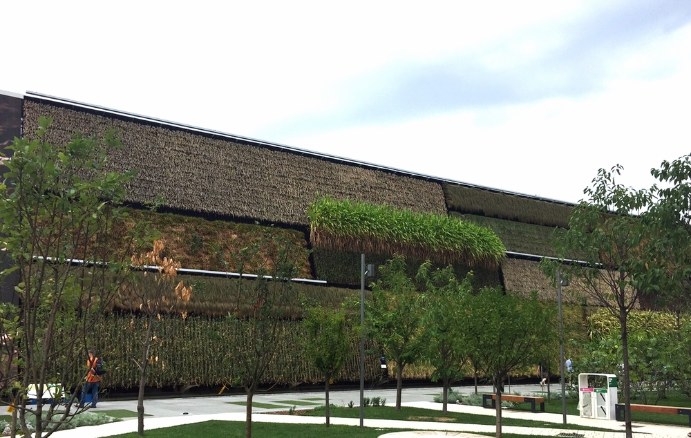 Israel's Pavilion is titled Fields of Tomorrow and includes a 70 meter long vertical garden whose colors will change with the seasons