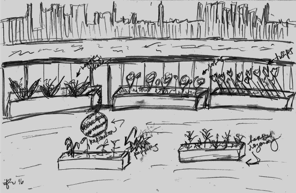 View form the top: my Brooklyn  terrace garden  design. Sketch by imane fiocchi.