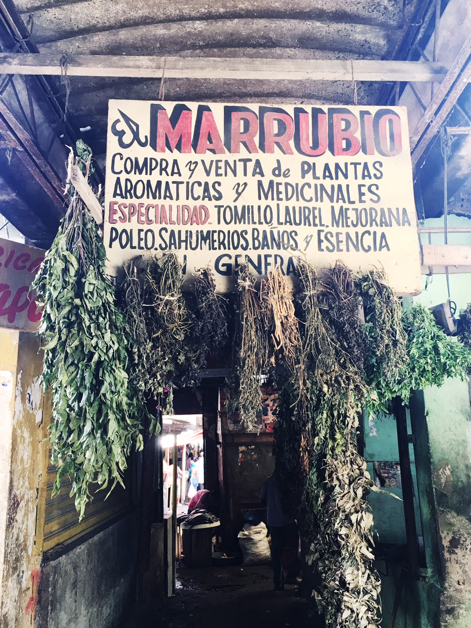 At the central market, dried healing botanicals.