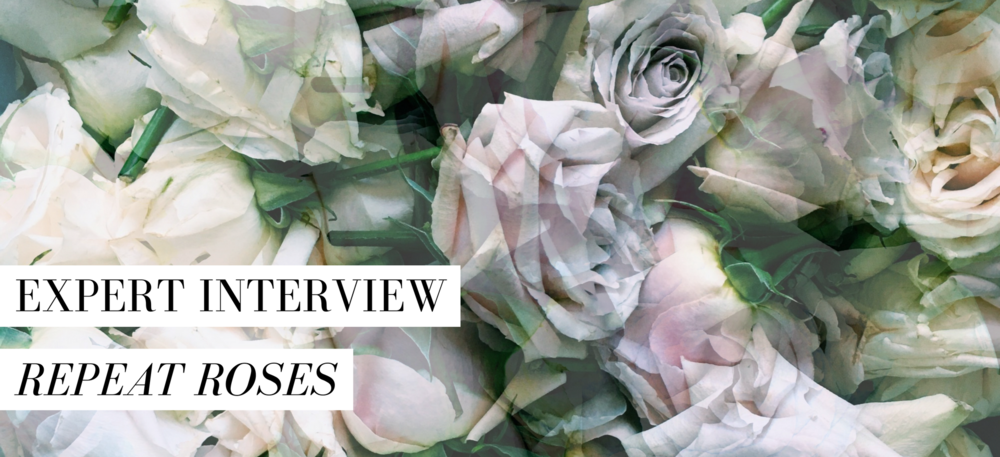 All photos courtesy of Repeat Roses.