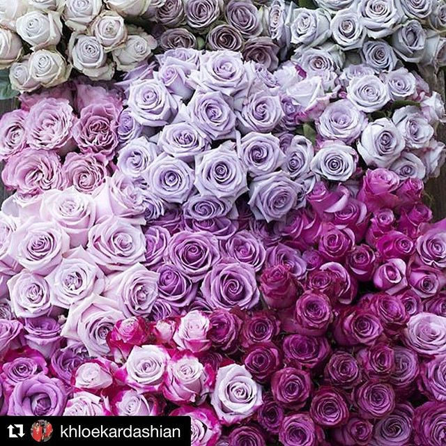 "#repost @khloekardashian ""flowers have powers too"" 👏🏻👏🏻👏🏻"