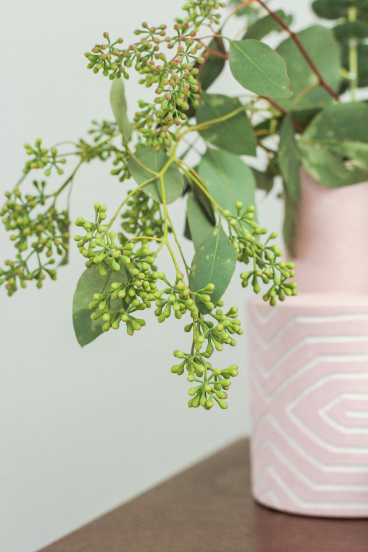 Eucalyptus in Pink Vase
