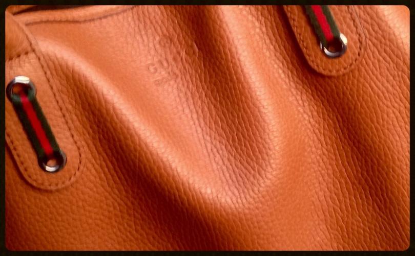 The perfect tan Gucci bag, image©gunjanvirk