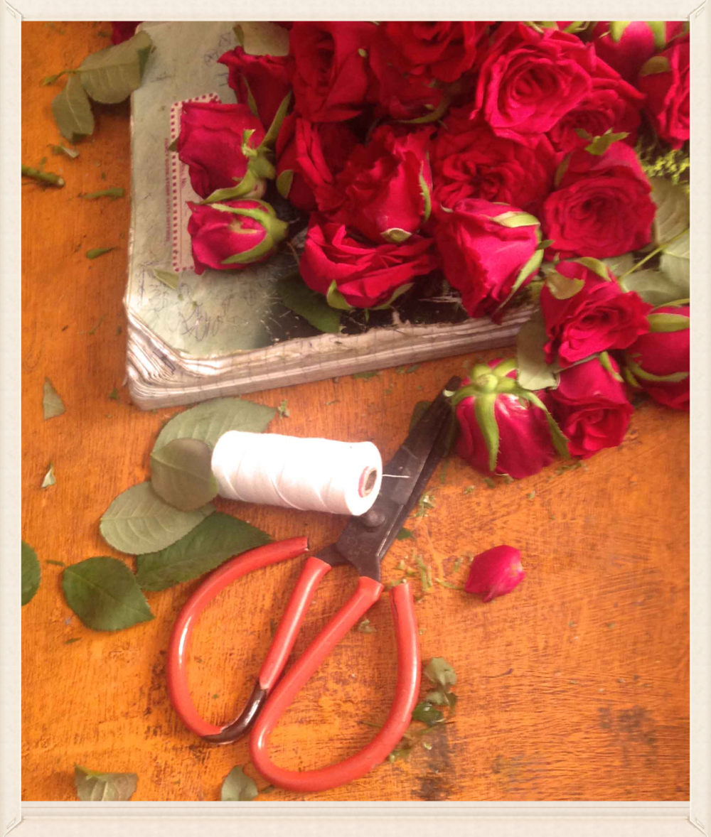 Roses, scissors and stems, image©gunjanvirk.