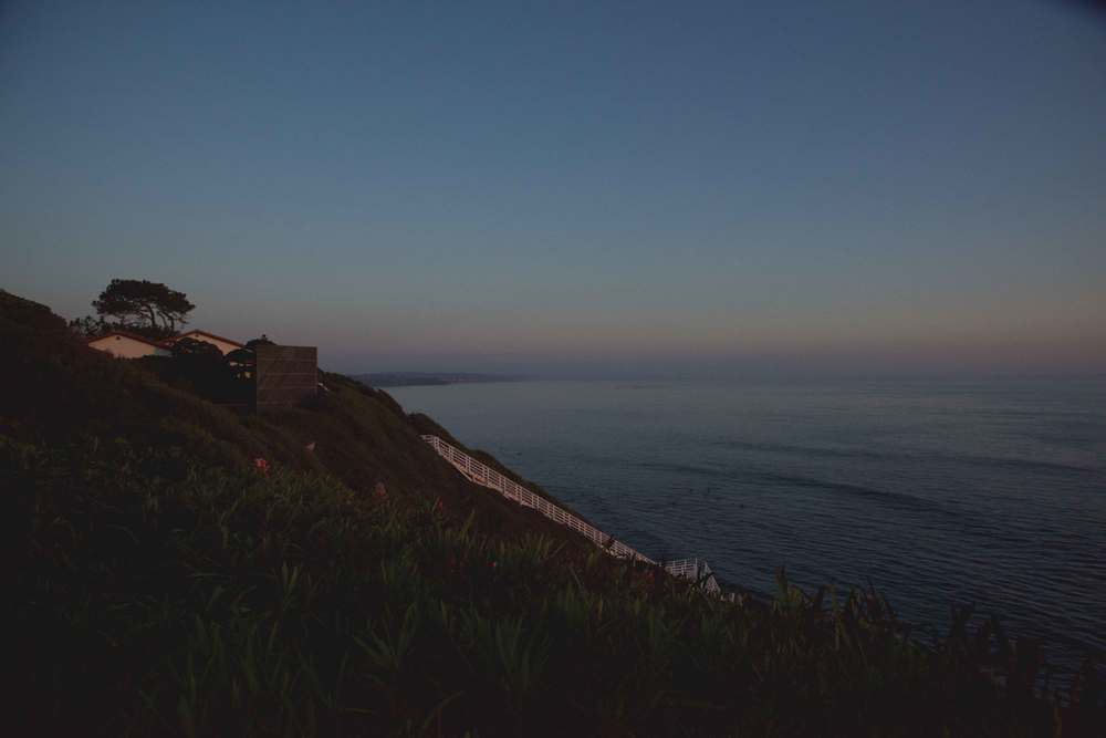 View of the sea from SRF gardens, Encinitas, CA. Image©gunjanvirk