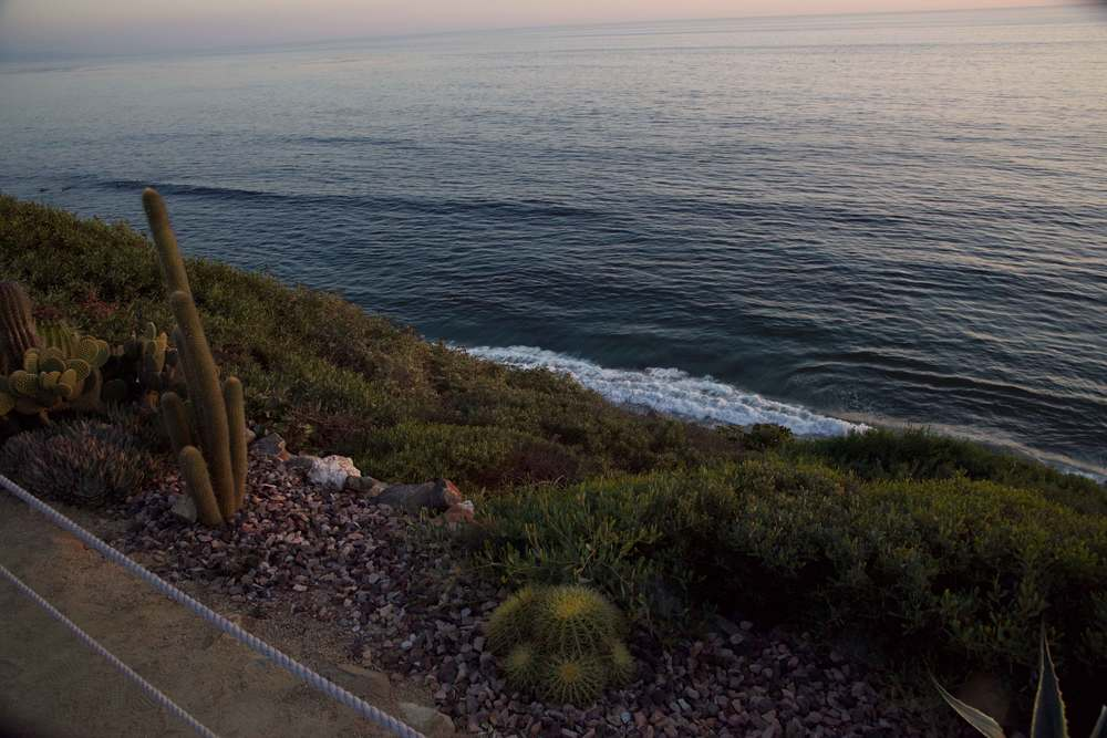 The view of the sea from the SRF meditation gardens at Encinitas, CA. Image©gunjanvirk