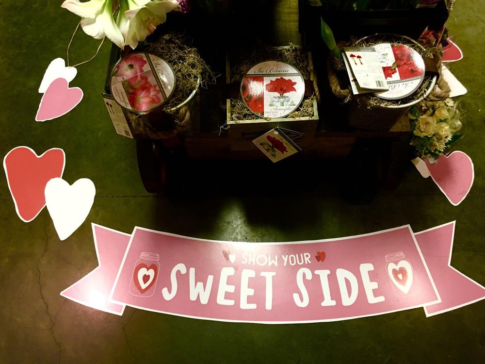 Aww, sweet! Image©gunjanvirk, camera iPhone 6s Plus