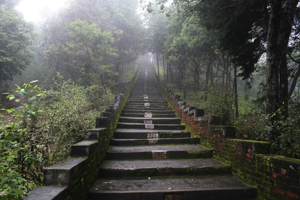The 800 steps leading to the Drongiri temple in Northern India, image©gunjanvirk