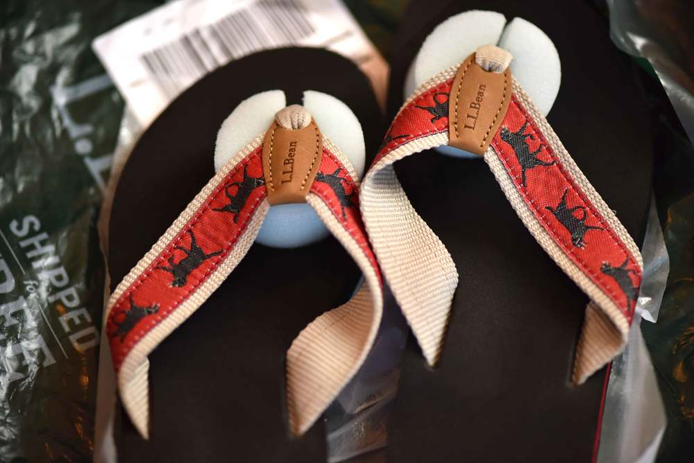LL Bean flip flops, image ©gunjanvirk