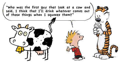 Calvin thinking deeply about the source of milk. Image from redpaper.in