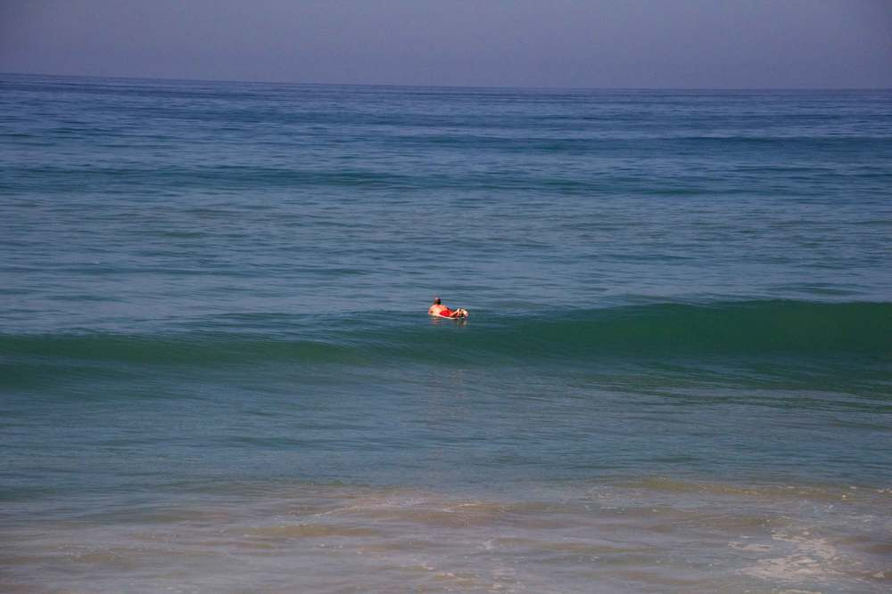 Surfing in the ocean, a lone surfer in the sun. Encinitas to L.A. by train. Image©gunjanvirk