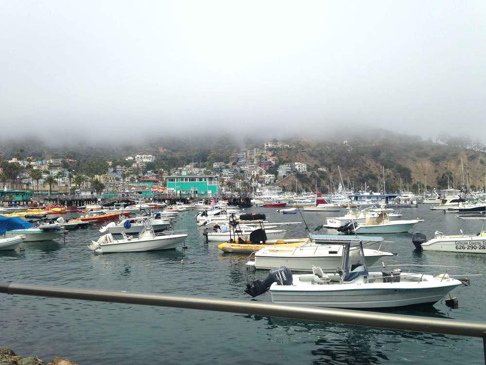 Catalina Island Harbor, foggy day in Catalina. Image©sourcingstyle.com