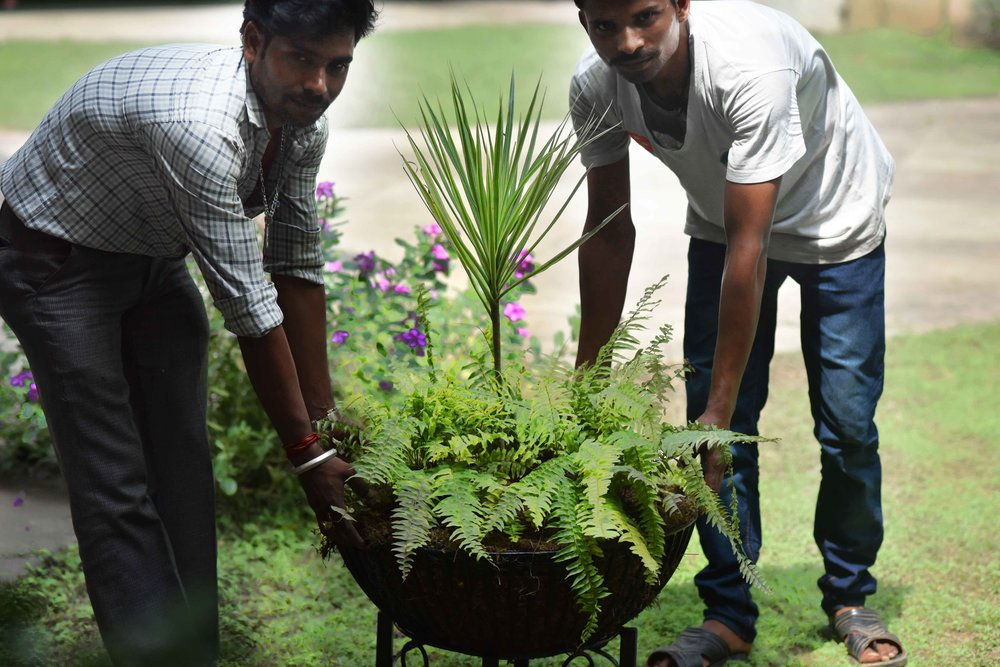 Landscape design by Geeta Singh, workers lifting plants. Image©sourcingstyle.com