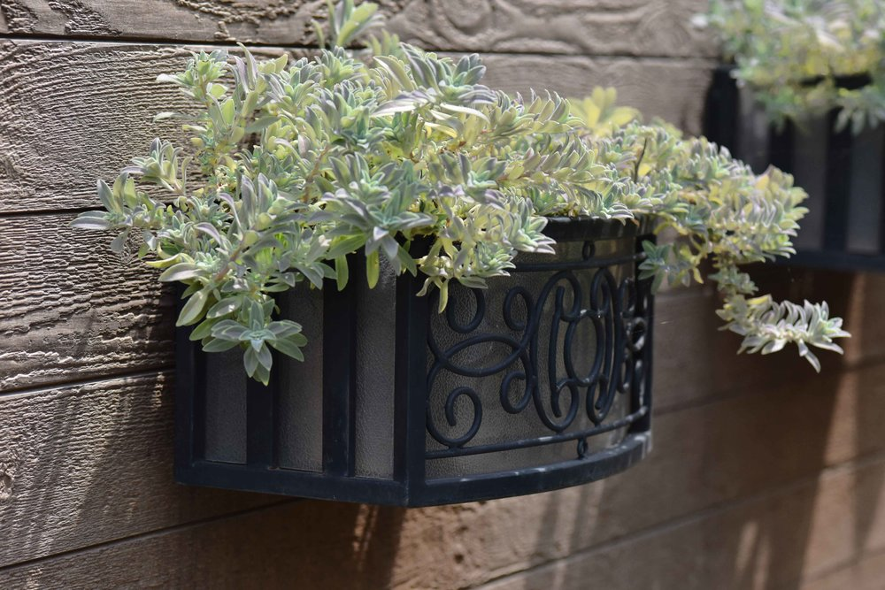 Landscape design by Geeta Singh, wall planter. Image©sourcingstyle.com