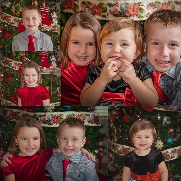 Family Christmas Portrait Volo, Illinois