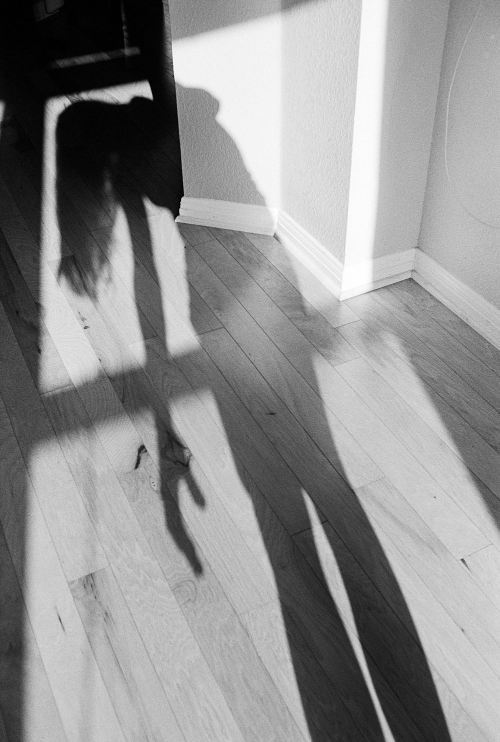 shadow portrait (1 of 1).jpg