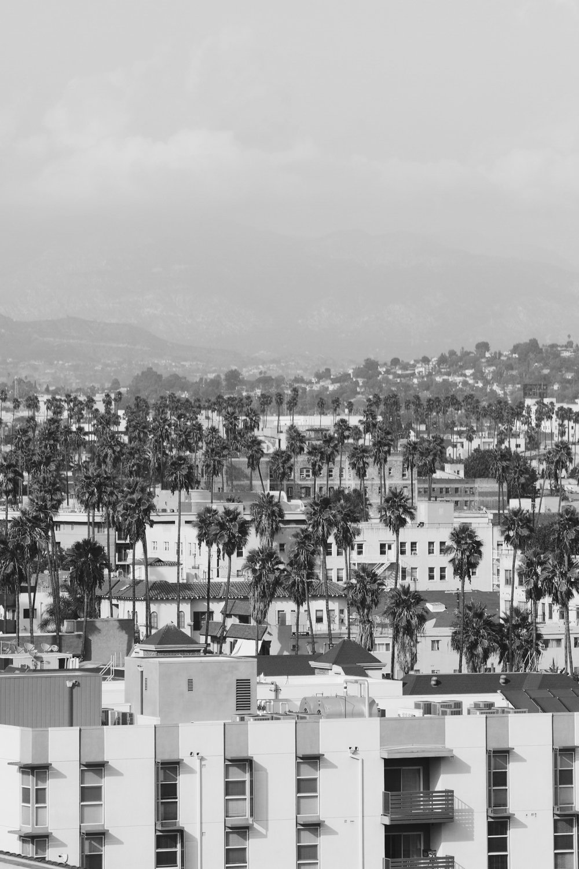 LA by Toby Mitchell.jpg