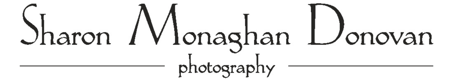 Sharon Monaghan Donovan Photography