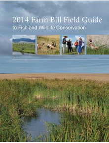 2014 Farm Bill Guide