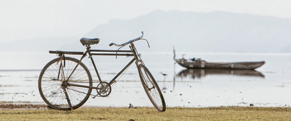 cycle_safari_2.jpg