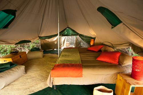 green_camp-5.jpg