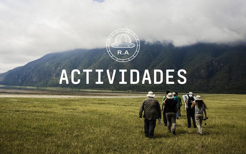 actividades2.jpg