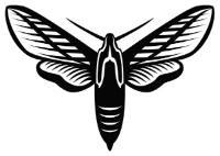 moth_woodcut_web_500px.jpg