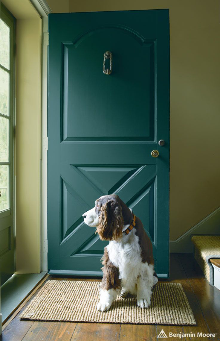 Jack Pine - Aura Grand Entrance - Satin