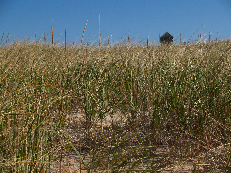 Ptown beach
