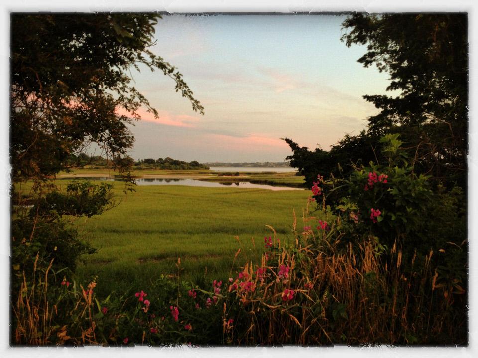 Menemsha marsh