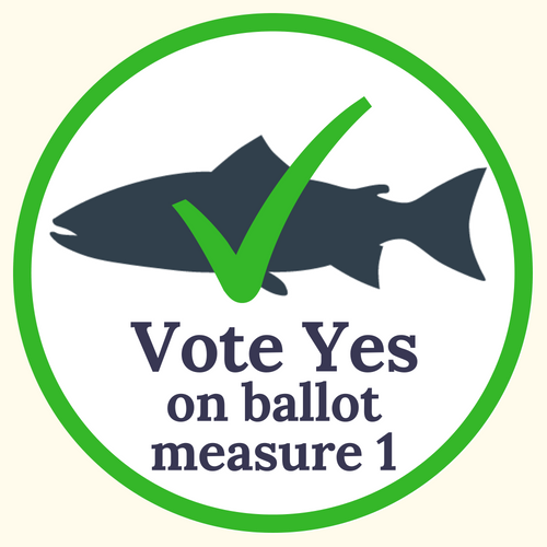 vote yes on balmeas1.png