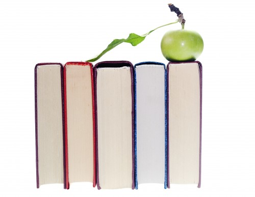online homework help tutor