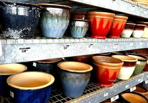 selecting pots