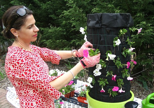 Flower Tower Kim