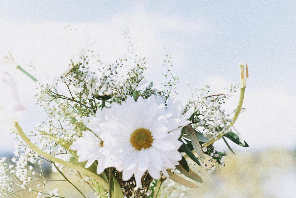popcosmo.flowers