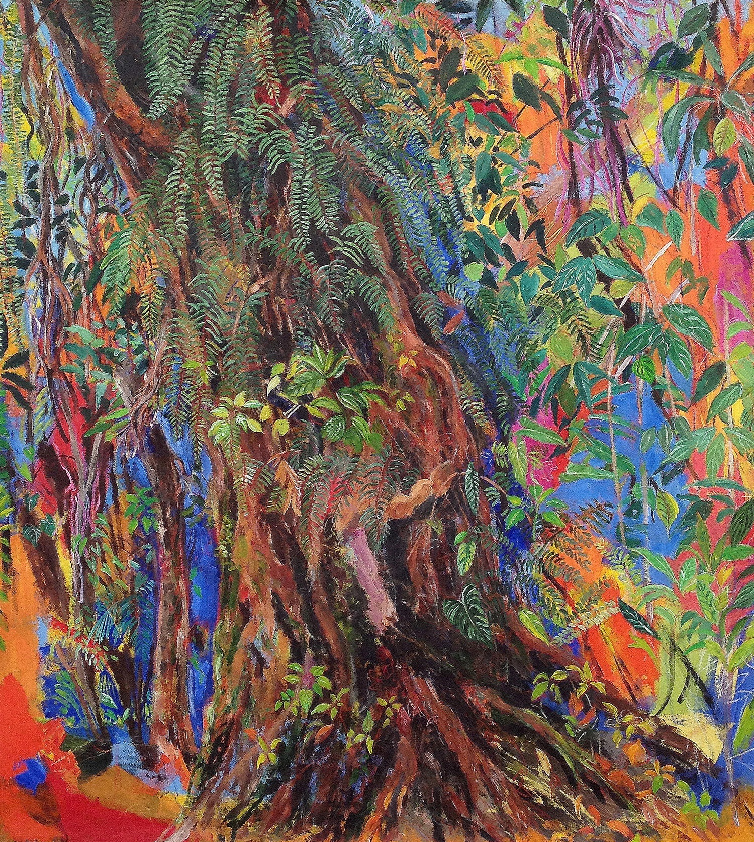 rainforests damian elwes