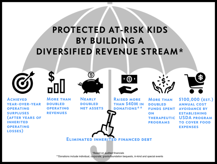 CEO Christine Spadafor - SJRC Revenue Stream.png