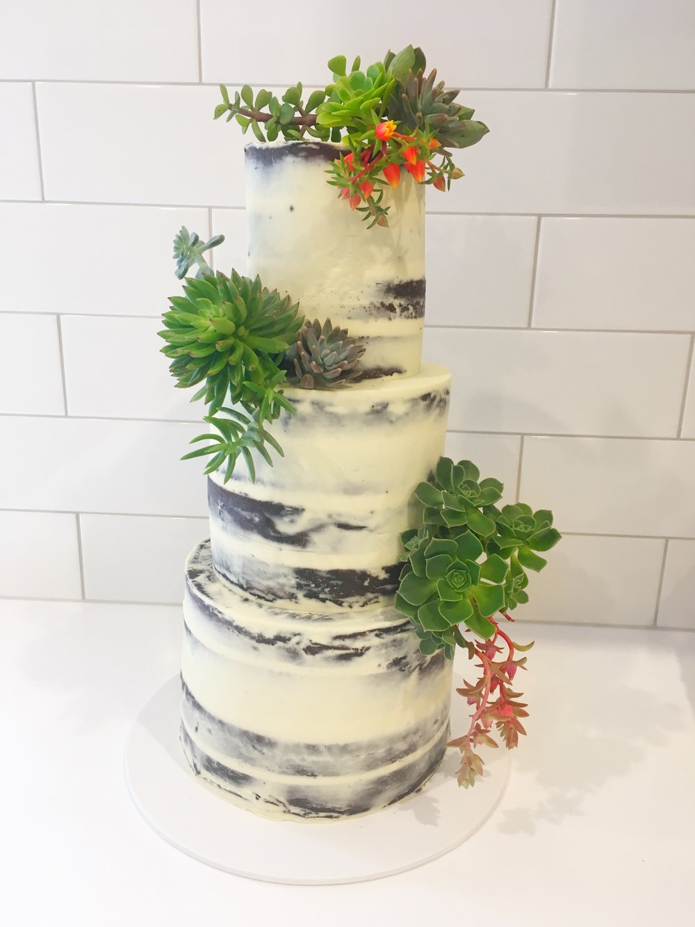 Naked Cake with Succulents