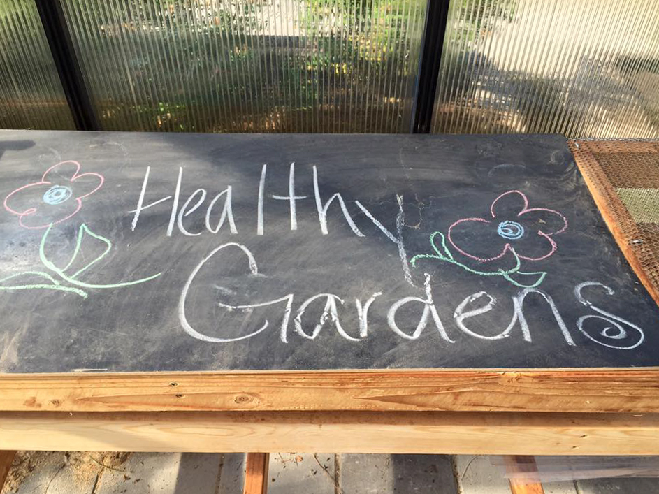 HealthyGardens-TakenByChelsea.jpg