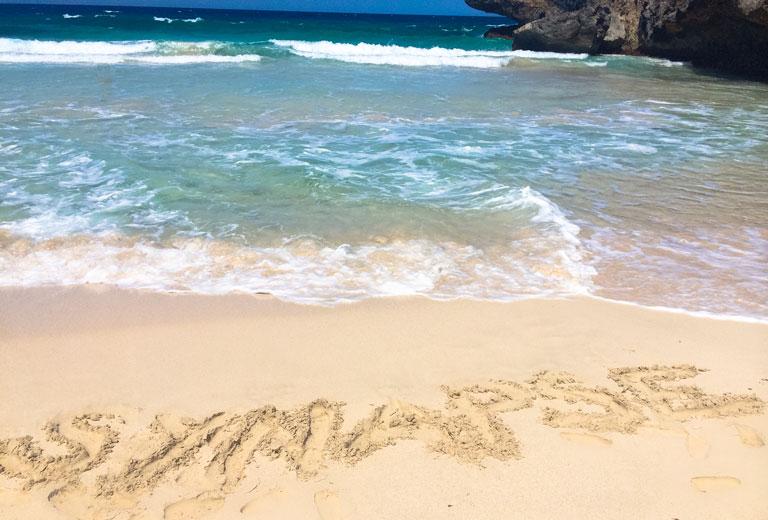Daimari Beach, Santa Cruz, Aruba. Photo by Tiffany Chan (M2)