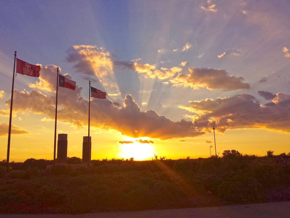 Sunset at Texas A&M College of Medicine (2015)—photo by Dr. Xin Wu