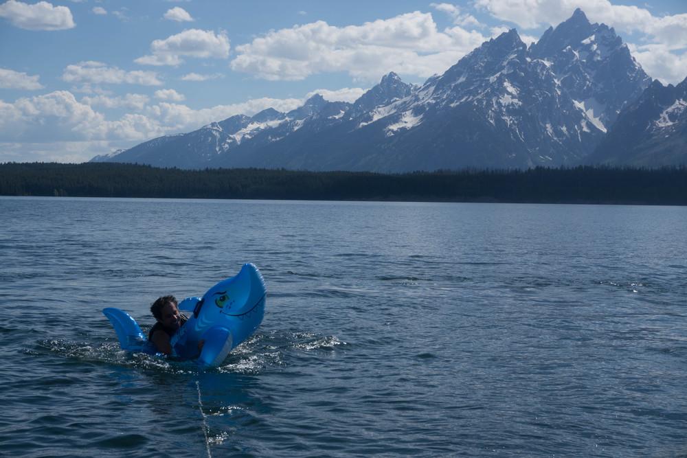 Shark attack on Jackson Lake!