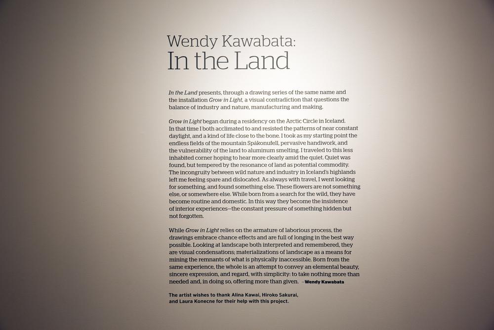 wendy kawabata_instl15_012.jpg