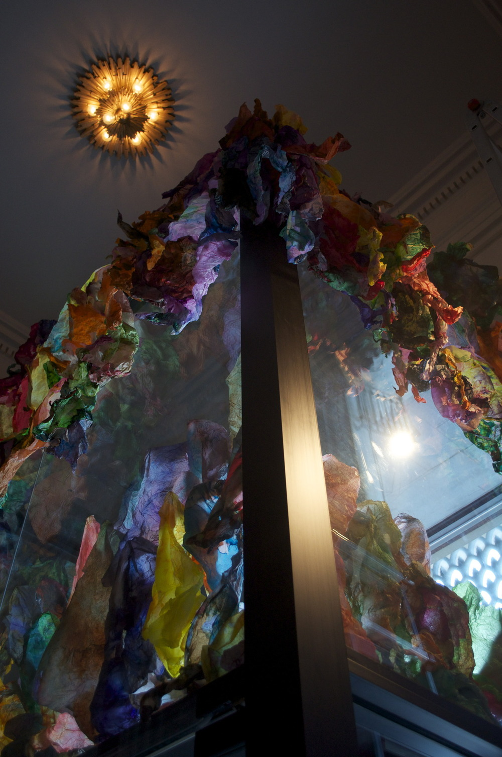 Site specific Installation at the Corcoran Gallery of Art