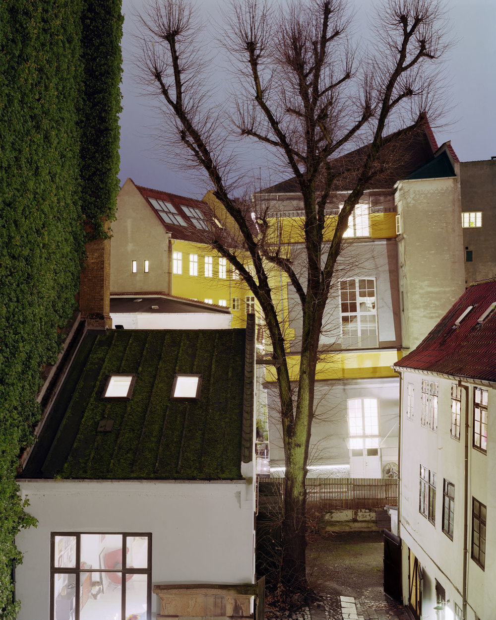 Copenhagen #3