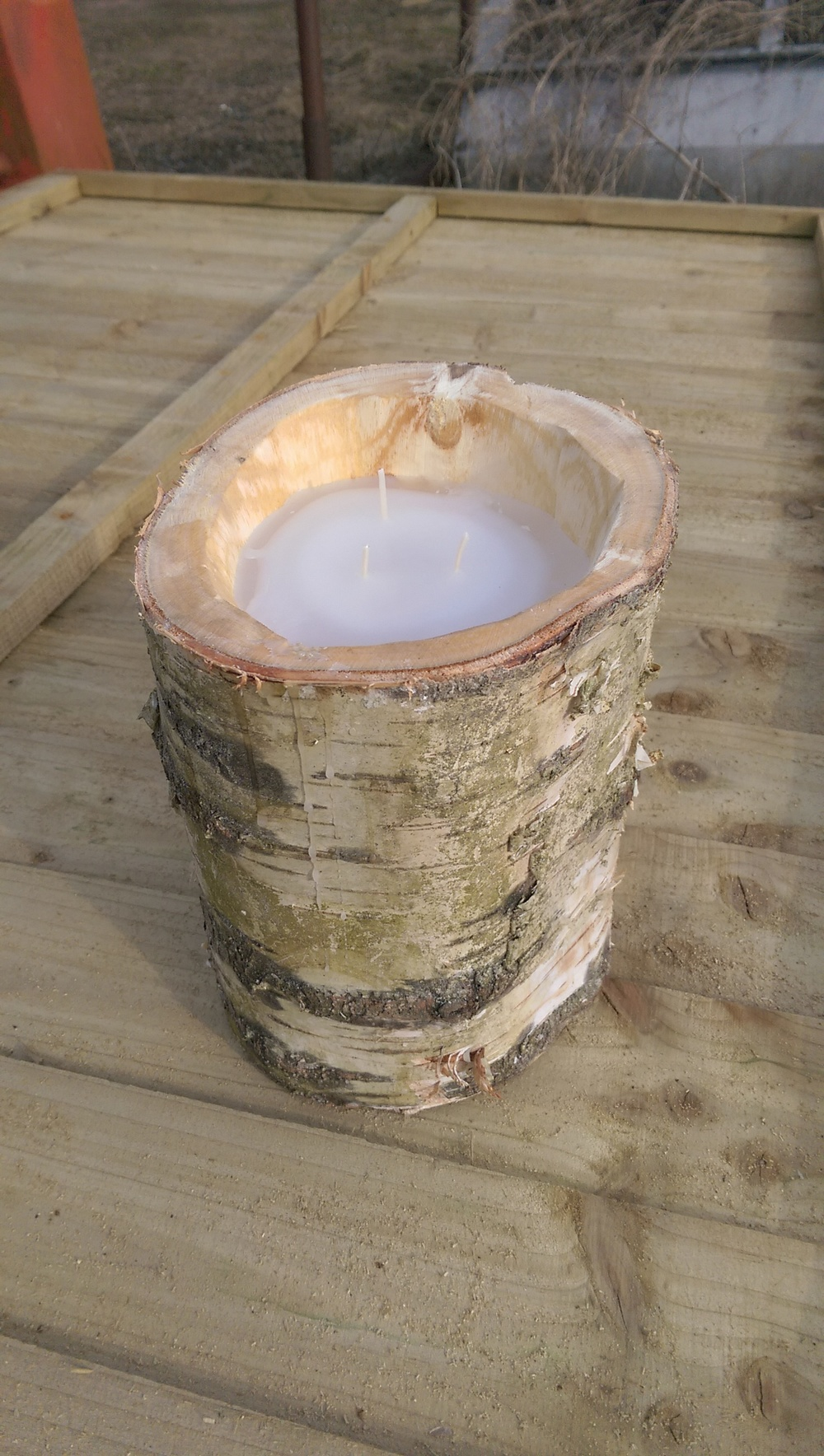 Hollowed Silver birch trunk with triple wicked wax candle inside- SOLD £25.00